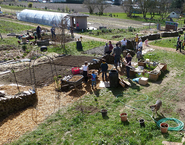 Work Party at the yarrow ecovillage